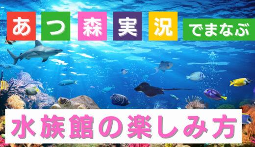 教育系Youtuber?あつまれどうぶつの森YouTube実況で水族館の魅力を学ぶ
