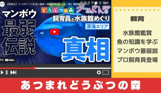 あつまれどうぶつの森YouTube実況で水族館の魅力を学ぶ